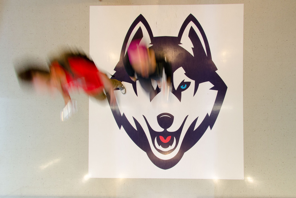 Dog decal on floor with students walking over it